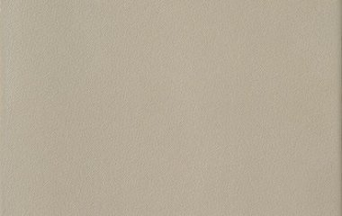 Code 	ILLUSION 50B LP    Numeric code 	102071    EAN13 Code 	80.27920.46642.8    Colour 	031 - BEIGE    Project 	156 - ILLUSION   	   Technology 	GLAZED PORCELAIN    Use 	Floor tiles    Size 	mm. 500 x 500  (20 nom x 20 nom)   LP. 50G